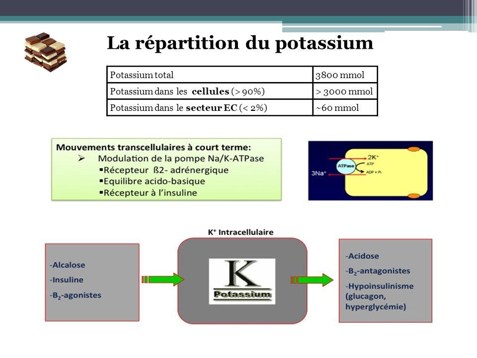 La répartition du potassium