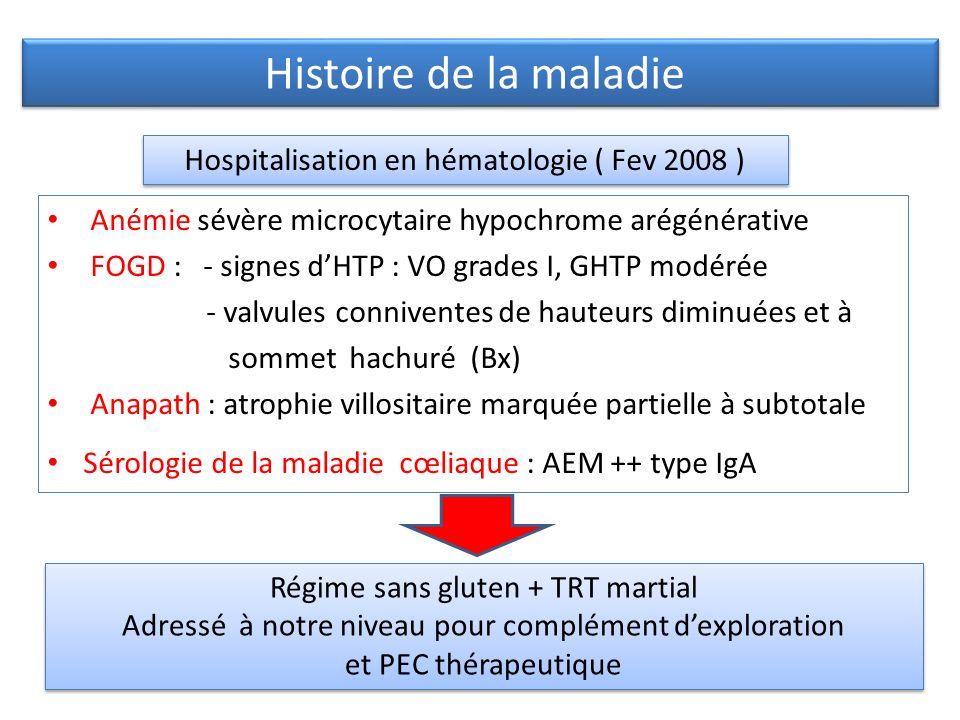 Histoire de la maladie Hospitalisation en hématologie ( Fev 2008 )