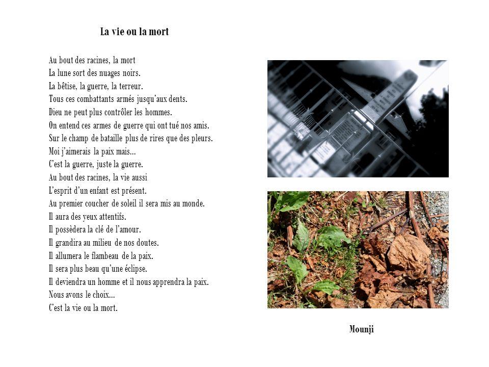 La vie ou la mort Au bout des racines, la mort