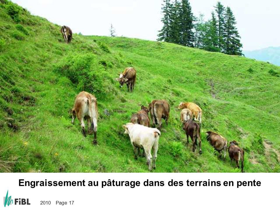 Bild: Weidemast im steilen Gelände