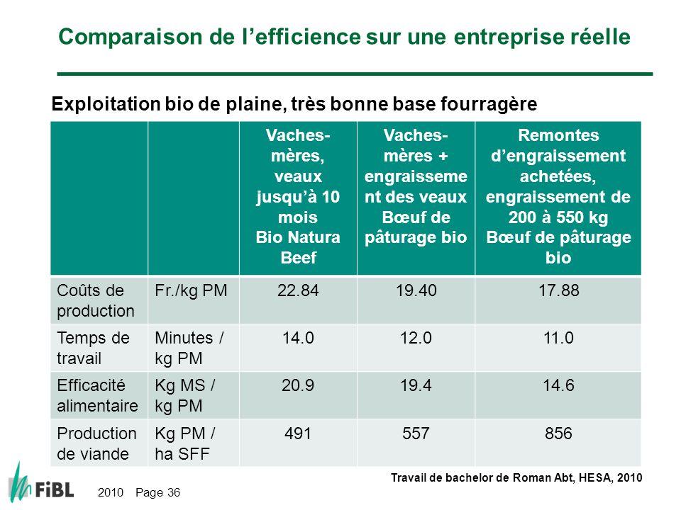 Comparaison de l'efficience sur une entreprise réelle