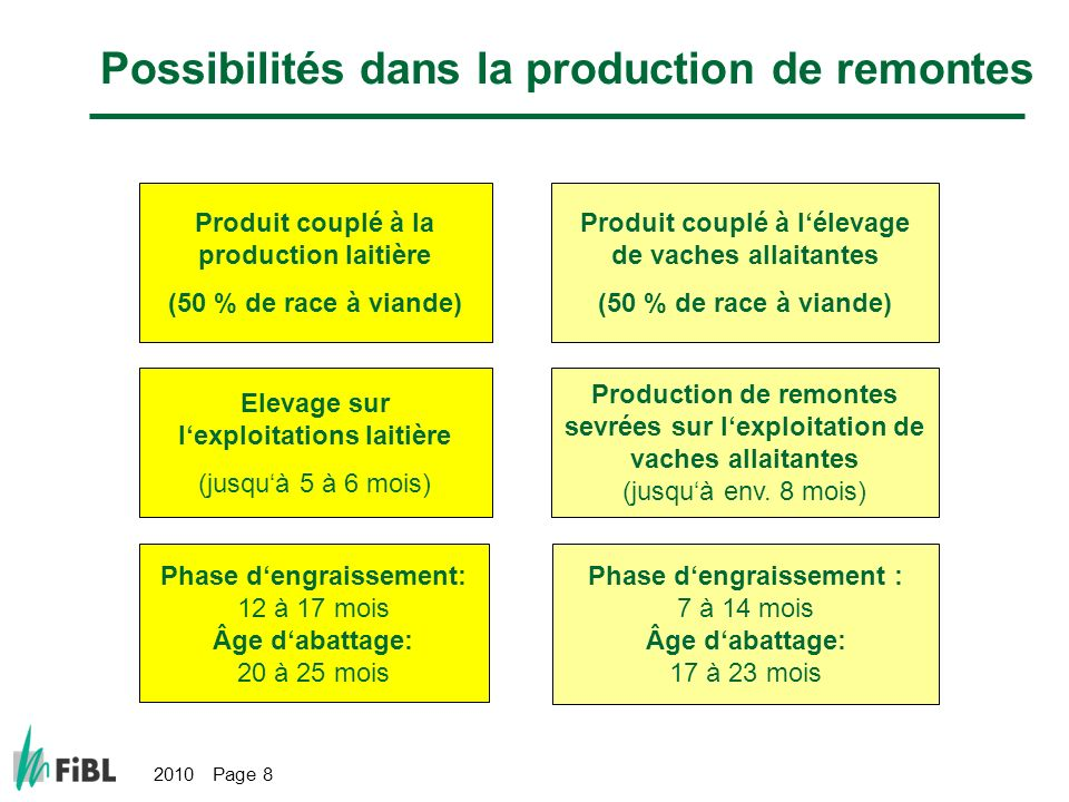 Possibilités dans la production de remontes