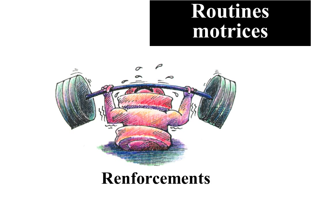 Renforcements