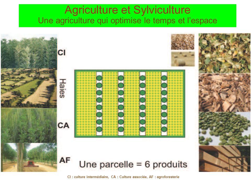 CI : culture intermédiaire, CA : Culture associée, AF : agroforesterie