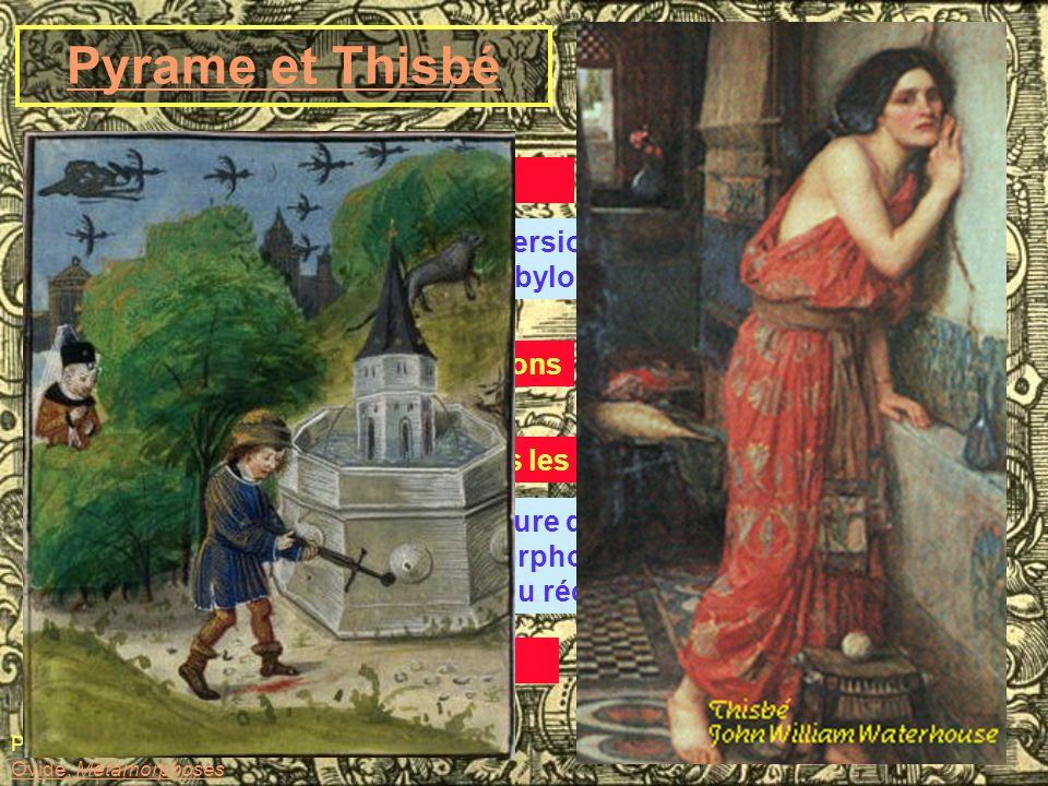 Pyrame et Thisbé A. La légende chez Ovide