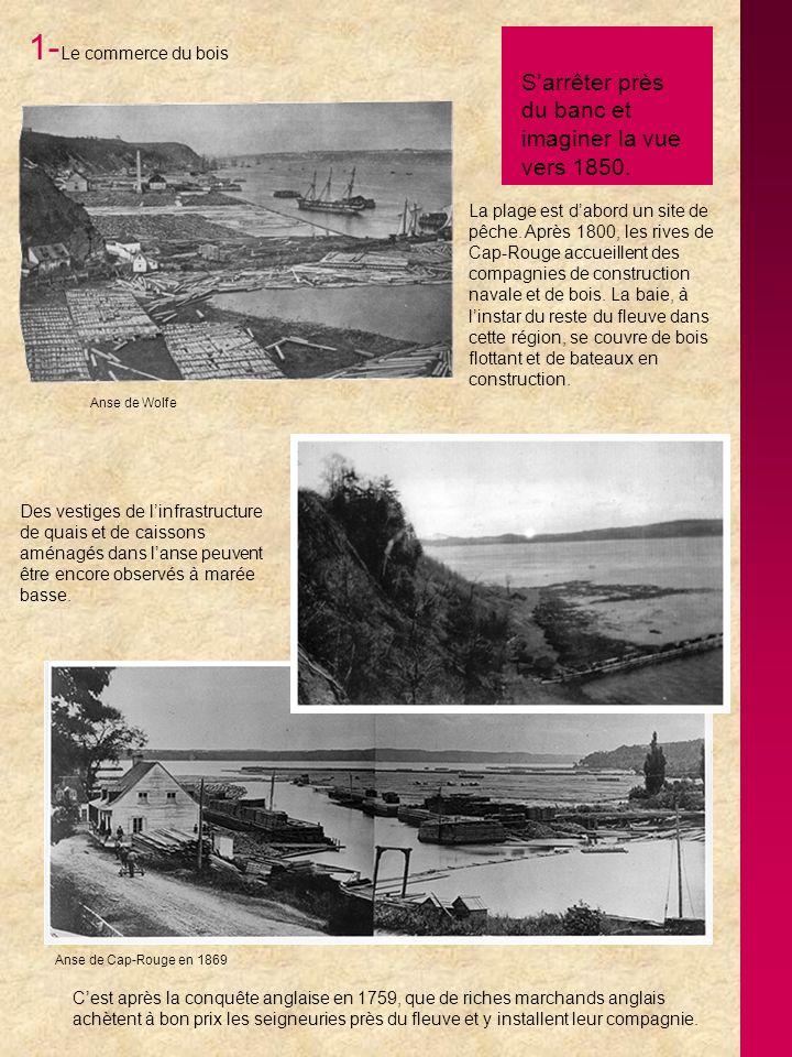 1-Le commerce du bois S'arrêter près du banc et imaginer la vue vers 1850.