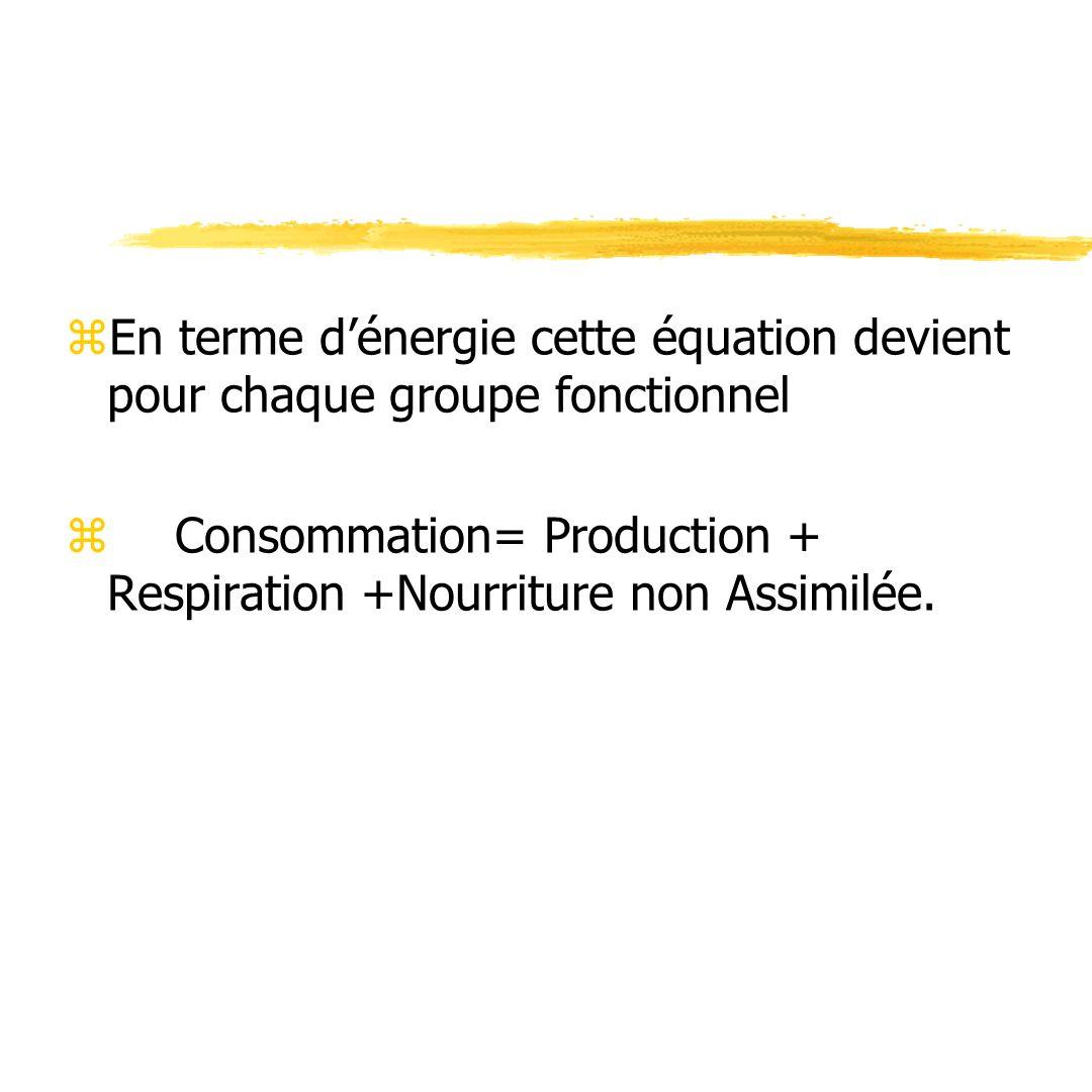 En terme d'énergie cette équation devient pour chaque groupe fonctionnel