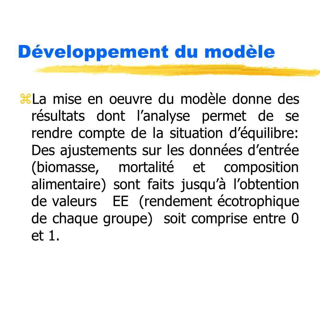 Développement du modèle