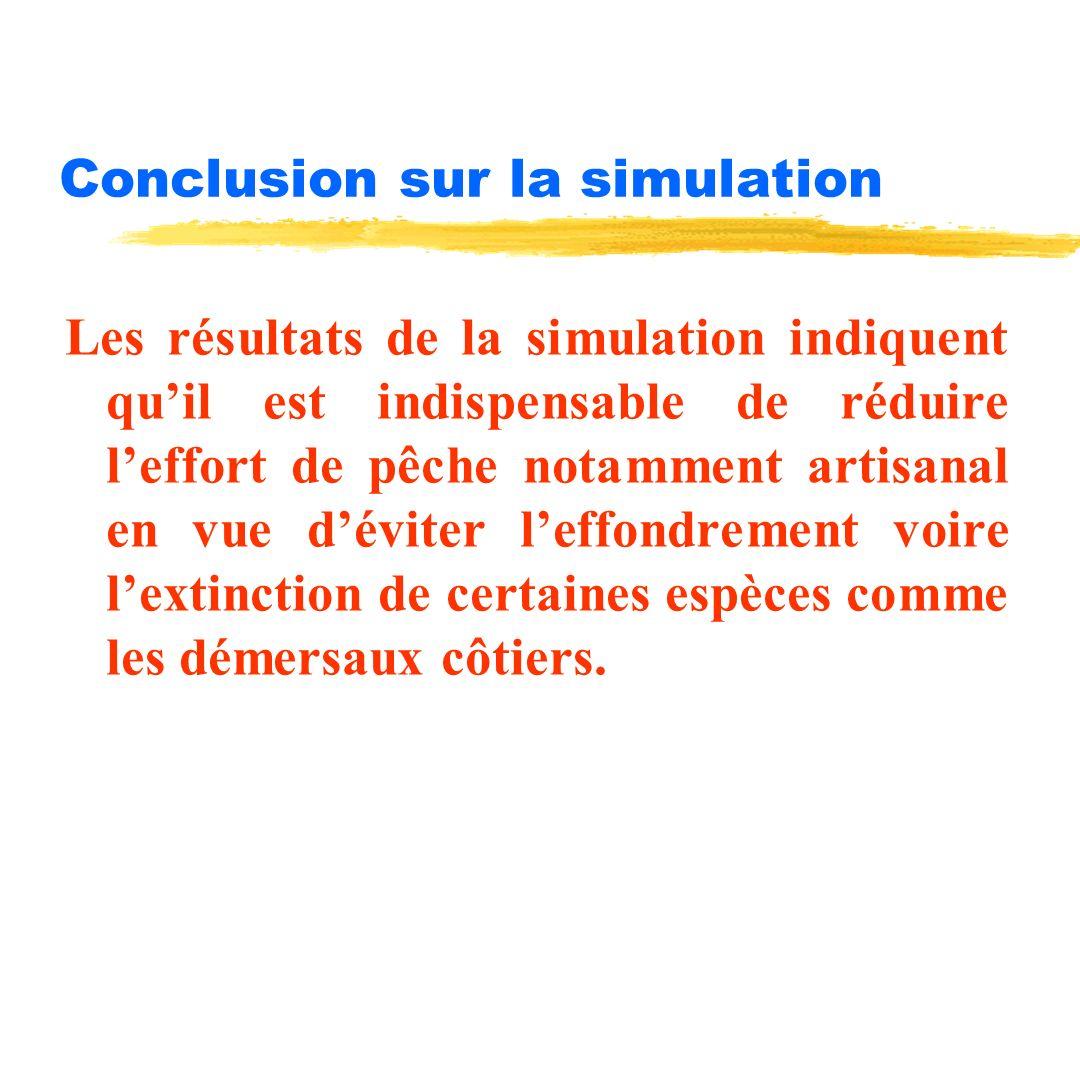 Conclusion sur la simulation