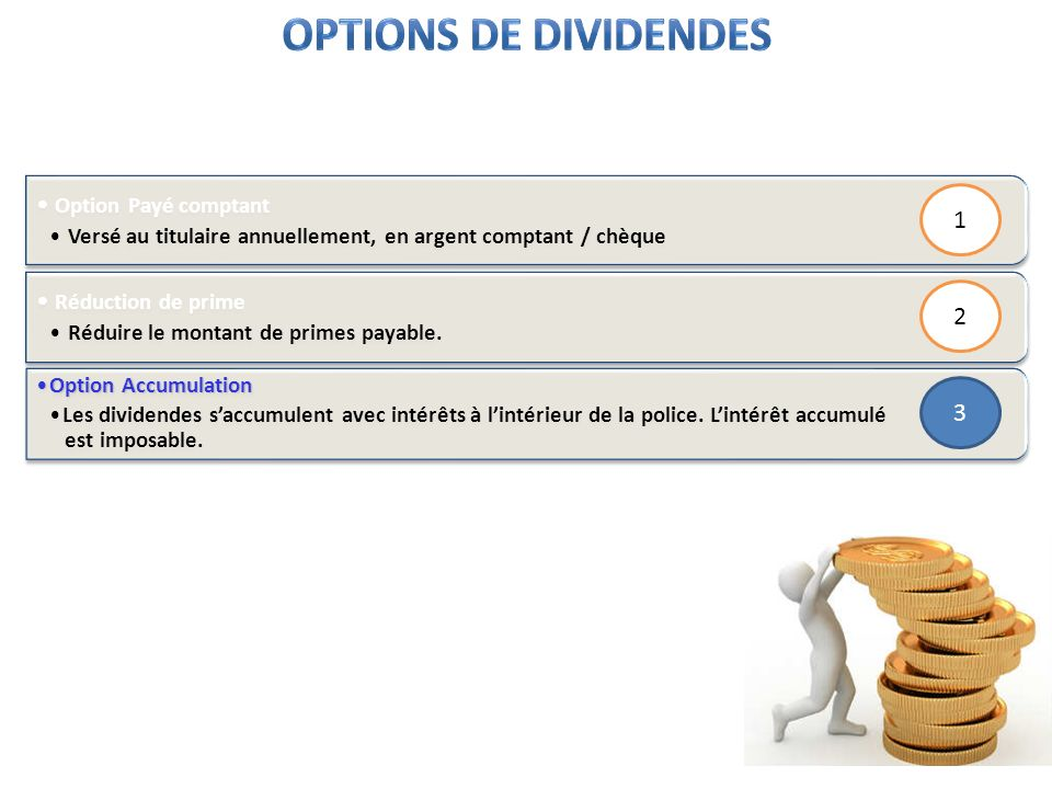Options de dividendes Option Payé comptant 1 Réduction de prime 2 3