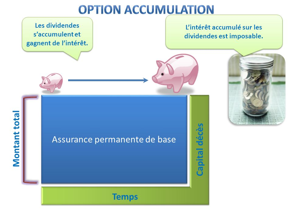 Option accumulation Assurance permanente de base Montant total