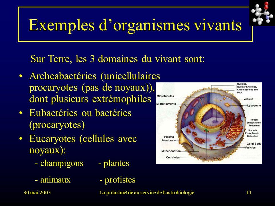 Exemples d'organismes vivants