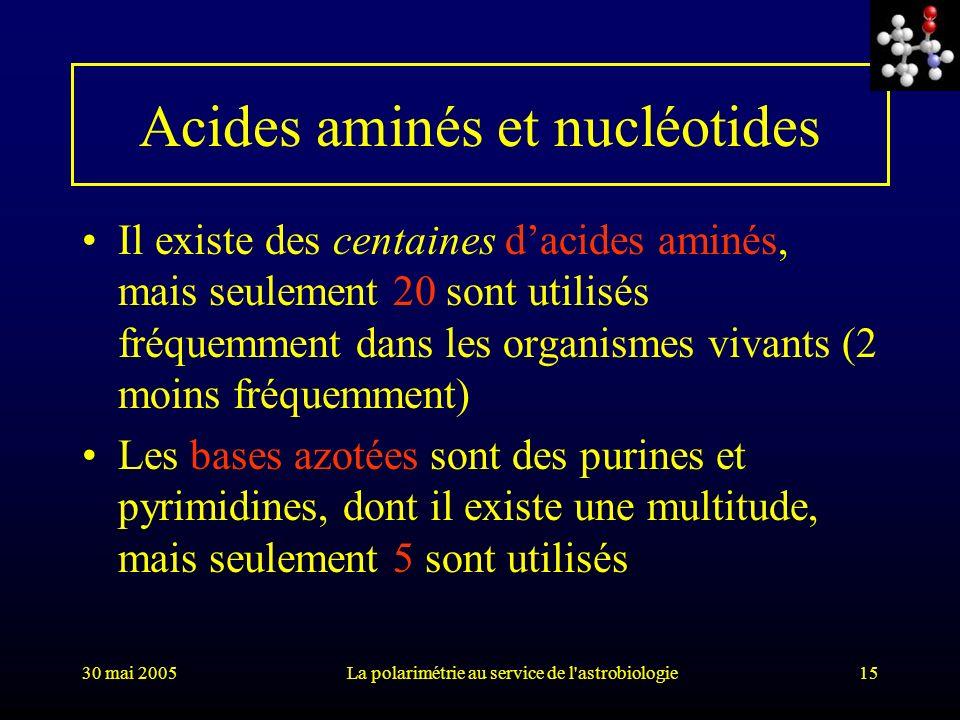 Acides aminés et nucléotides