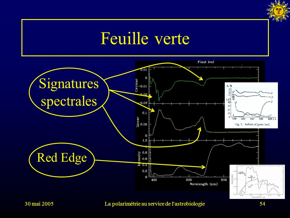 Feuille verte Signatures spectrales Red Edge 30 mai 2005