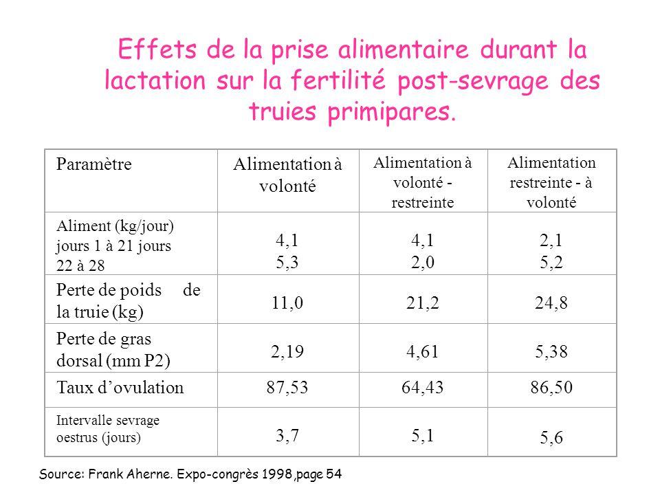 Effets de la prise alimentaire durant la lactation sur la fertilité post-sevrage des truies primipares.
