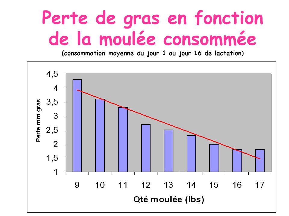 Perte de gras en fonction de la moulée consommée (consommation moyenne du jour 1 au jour 16 de lactation)