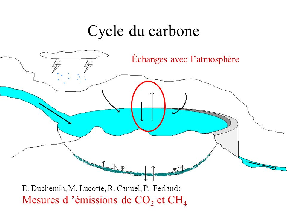 Cycle du carbone Mesures d 'émissions de CO2 et CH4