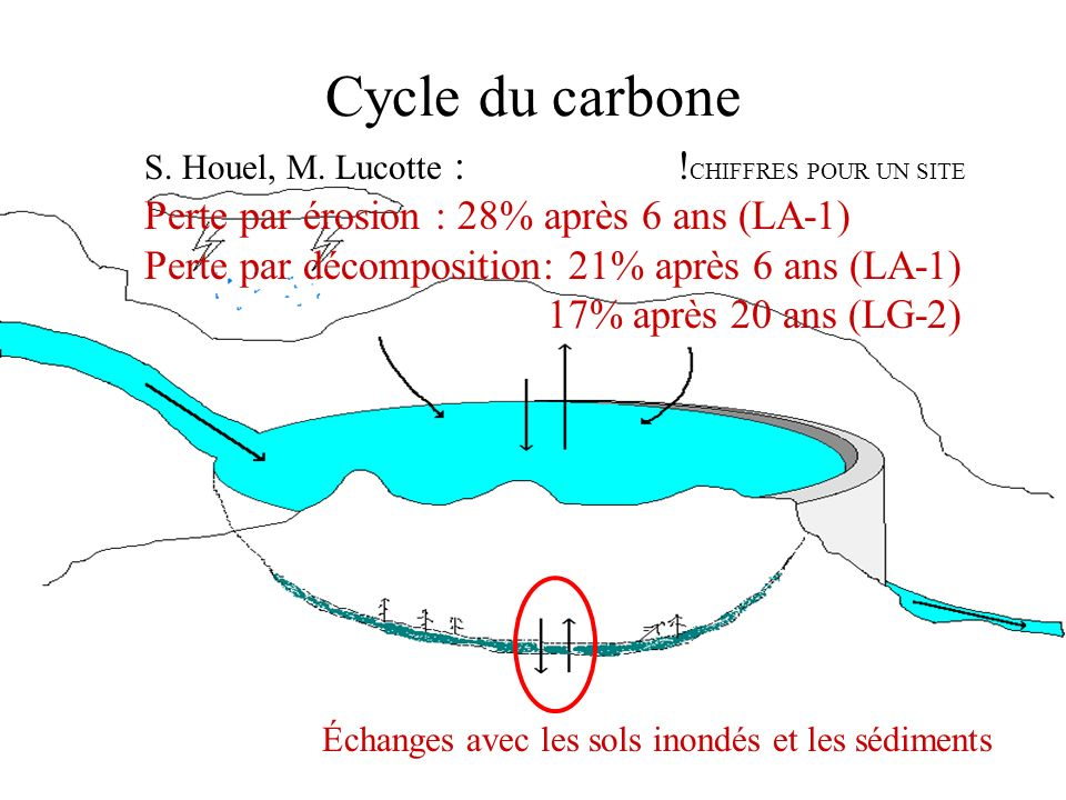 Cycle du carbone Image cycle carbone