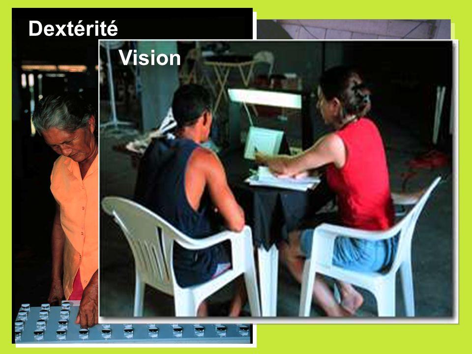 Dextérité Mouvements précis Tests sensibles Vision