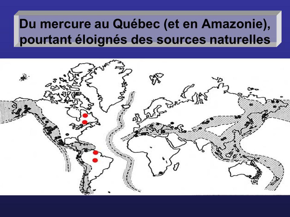 Du mercure au Québec (et en Amazonie), pourtant éloignés des sources naturelles