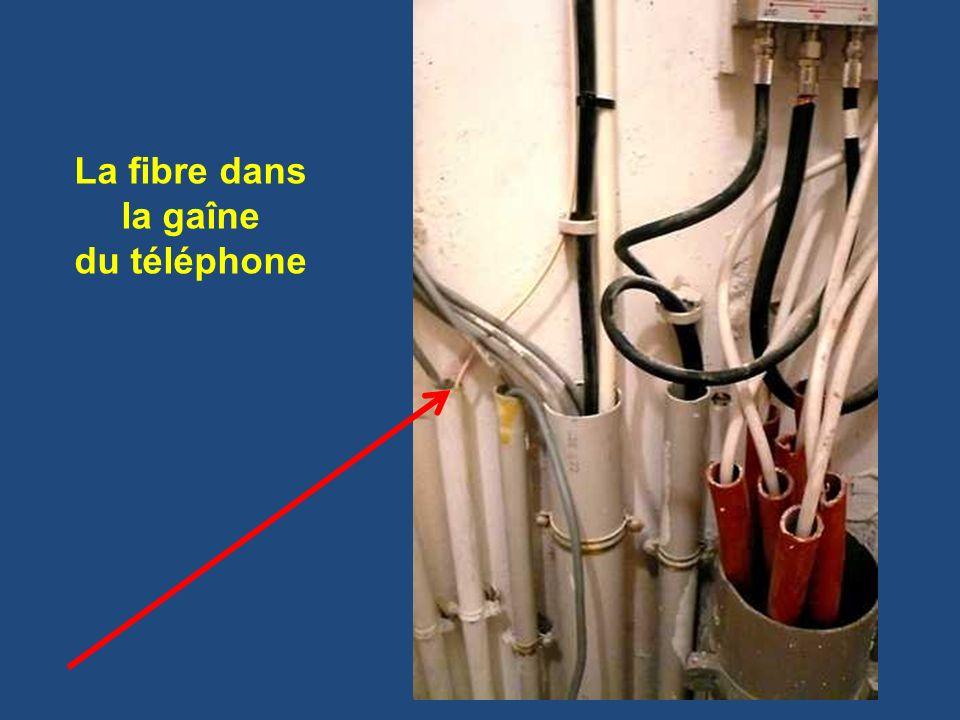 La fibre dans la gaîne du téléphone