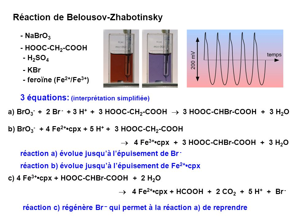 Réaction de Belousov-Zhabotinsky