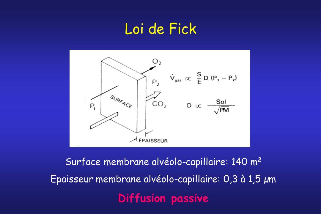 Loi de Fick Diffusion passive