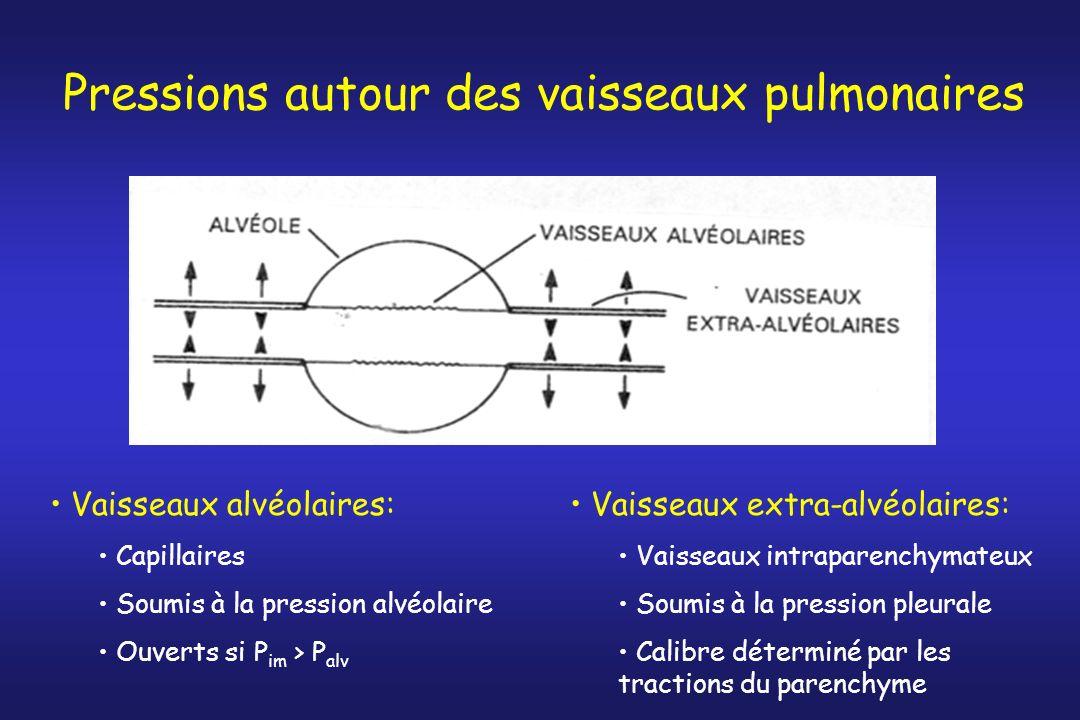 Pressions autour des vaisseaux pulmonaires