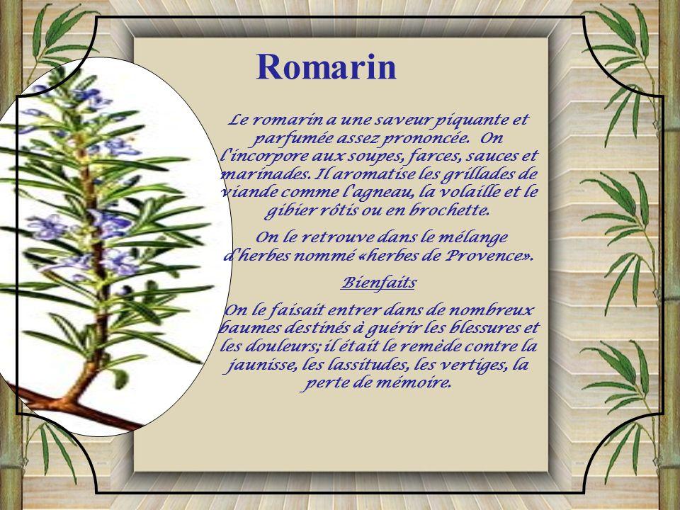 On le retrouve dans le mélange d herbes nommé «herbes de Provence».