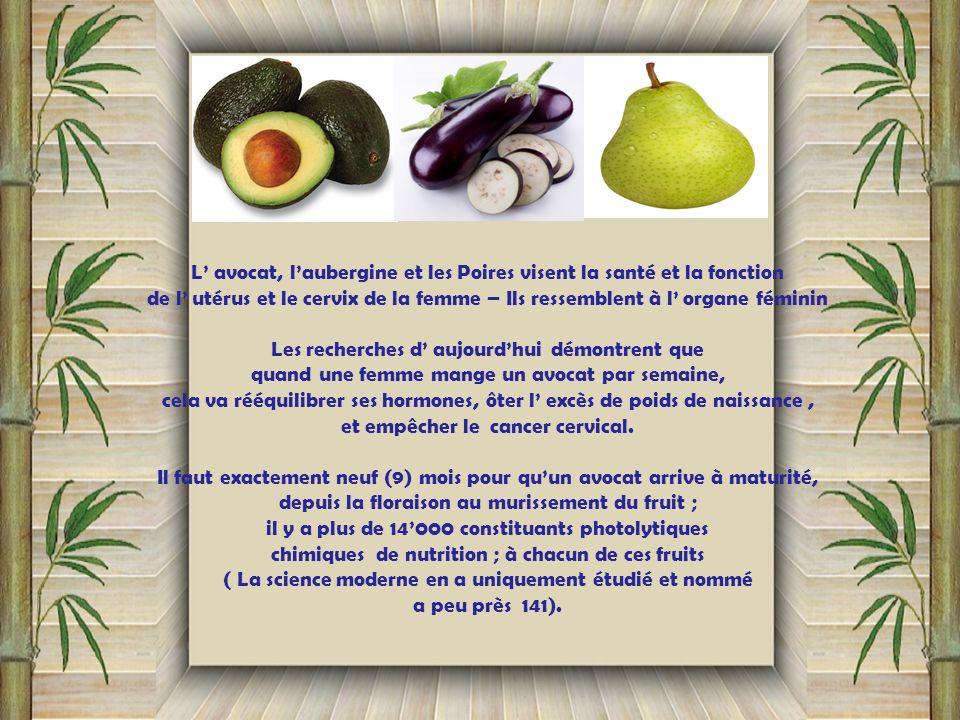 L' avocat, l'aubergine et les Poires visent la santé et la fonction
