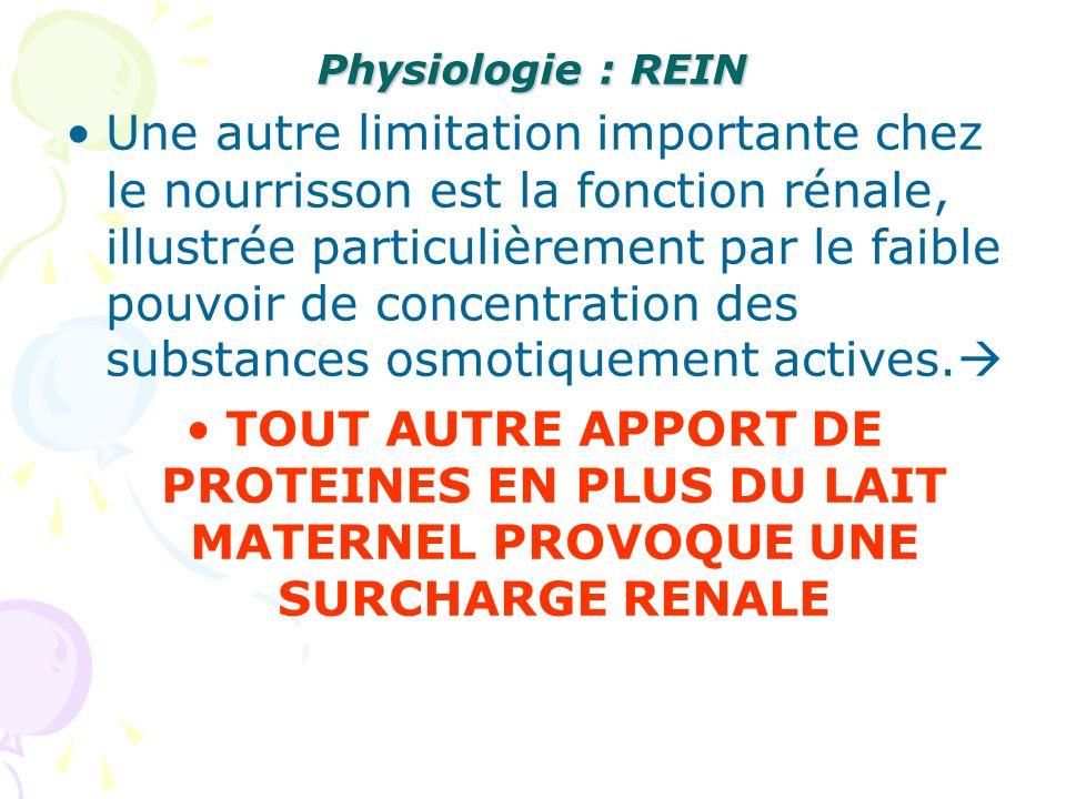 Physiologie : REIN