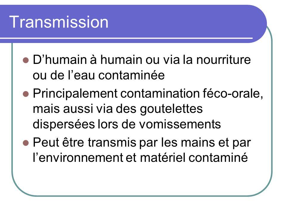 Transmission D'humain à humain ou via la nourriture ou de l'eau contaminée.
