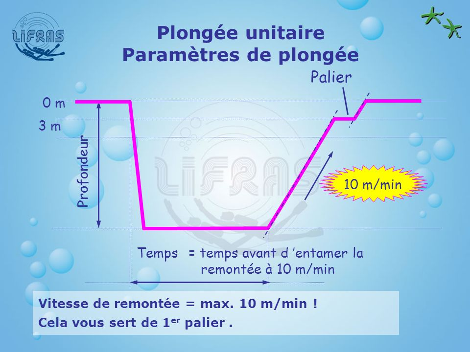 Plongée unitaire Paramètres de plongée