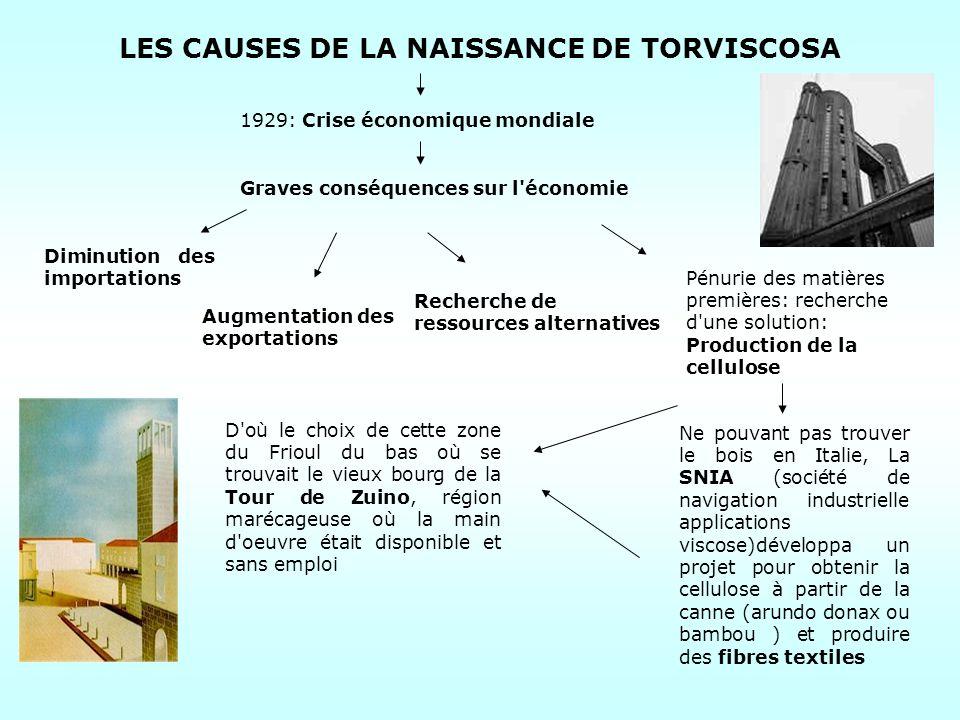 LES CAUSES DE LA NAISSANCE DE TORVISCOSA