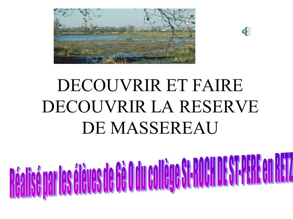 DECOUVRIR ET FAIRE DECOUVRIR LA RESERVE DE MASSEREAU