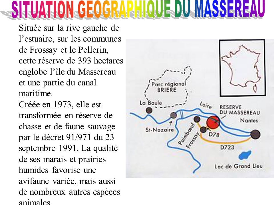 SITUATION GEOGRAPHIQUE DU MASSEREAU