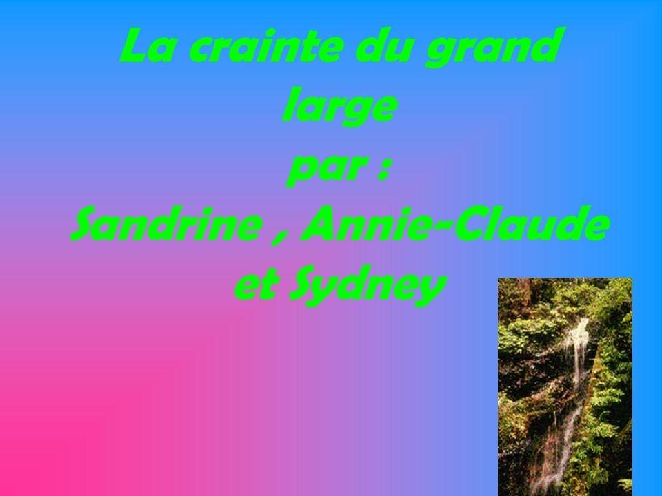 La crainte du grand large par : Sandrine , Annie-Claude et Sydney