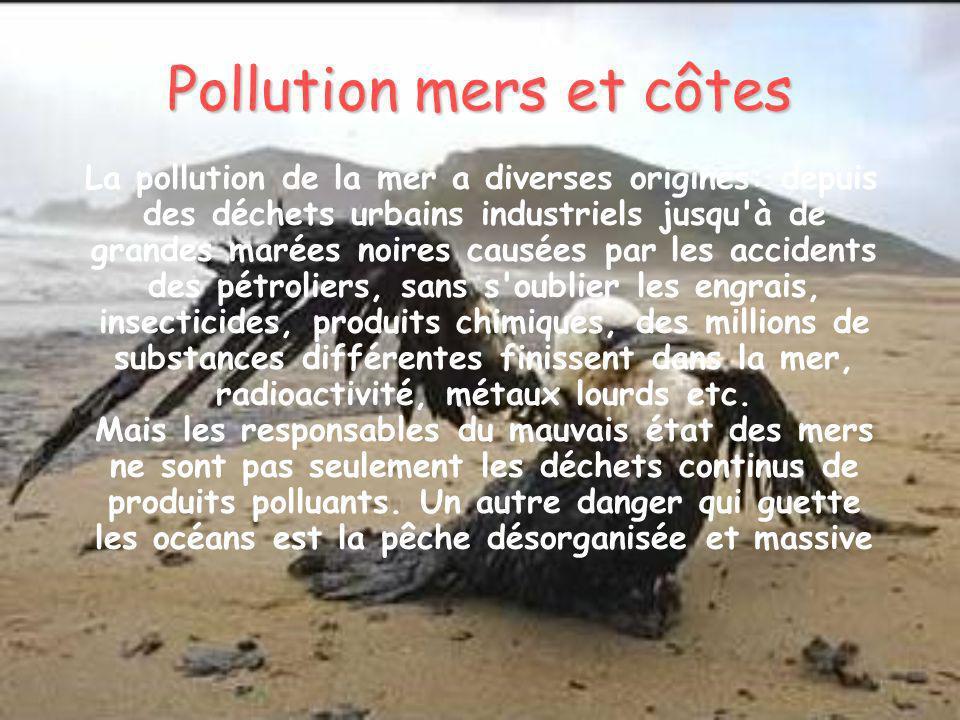 Pollution mers et côtes