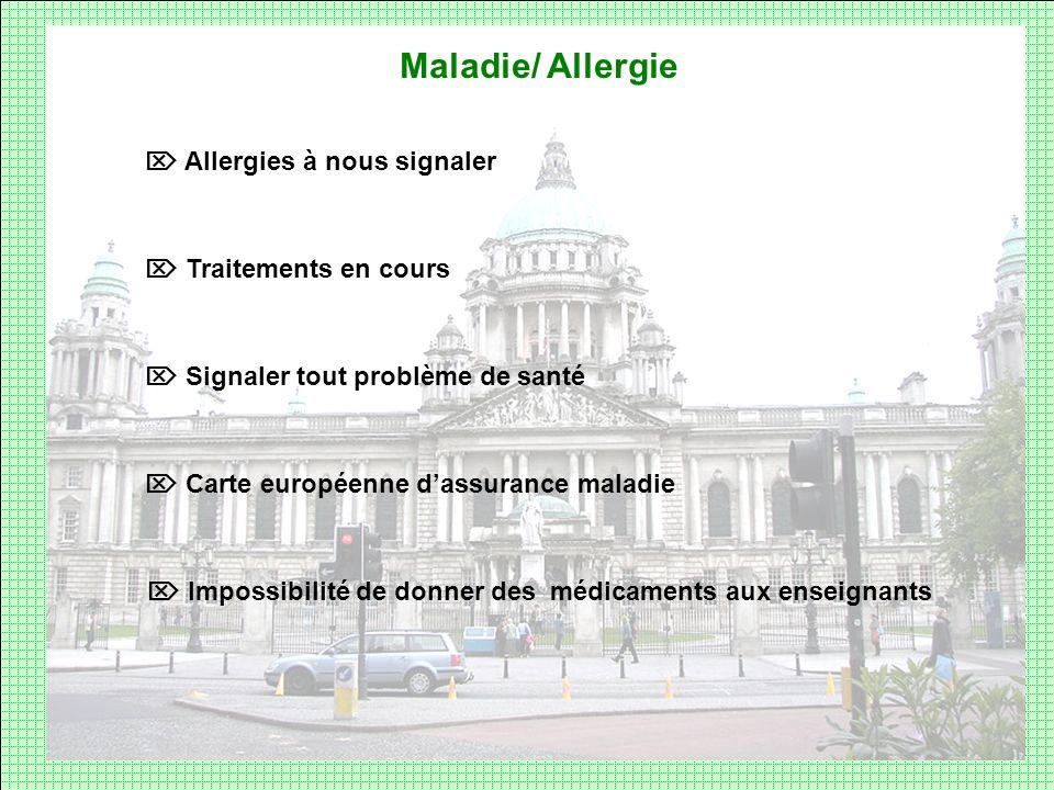 Maladie/ Allergie  Allergies à nous signaler  Traitements en cours