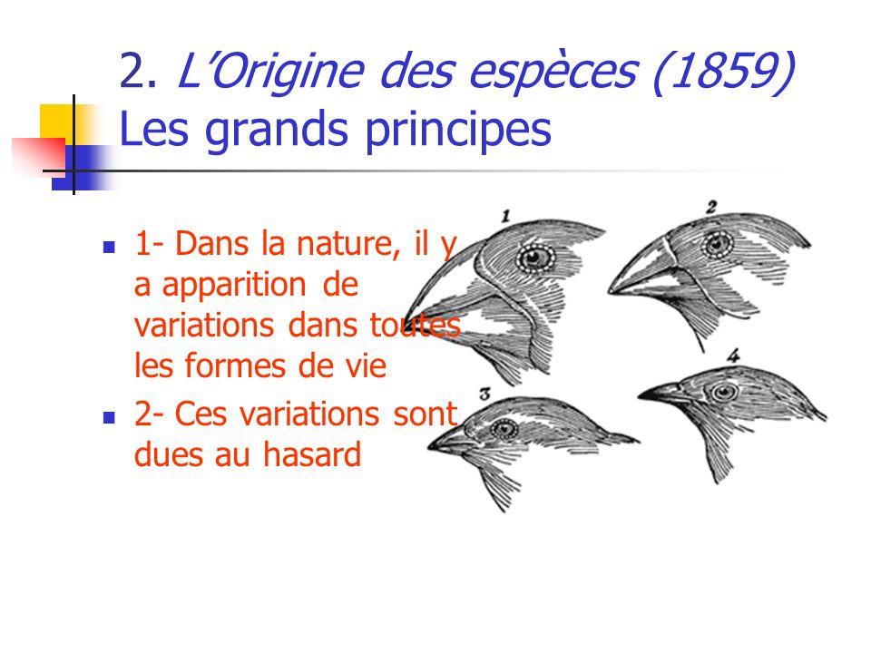 2. L'Origine des espèces (1859) Les grands principes