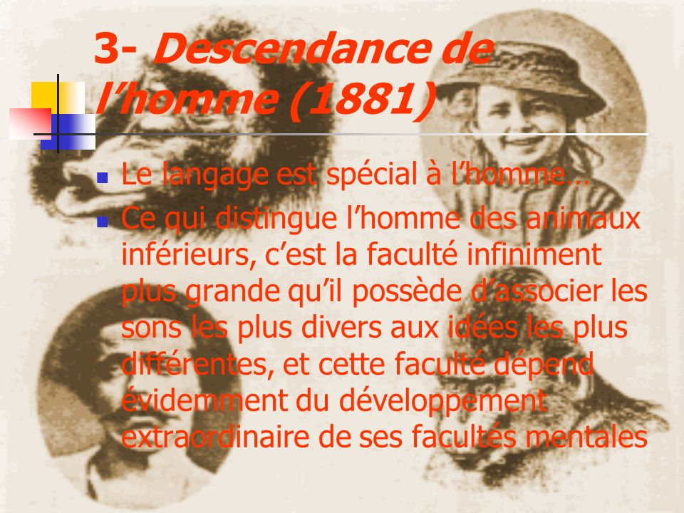 3- Descendance de l'homme (1881)
