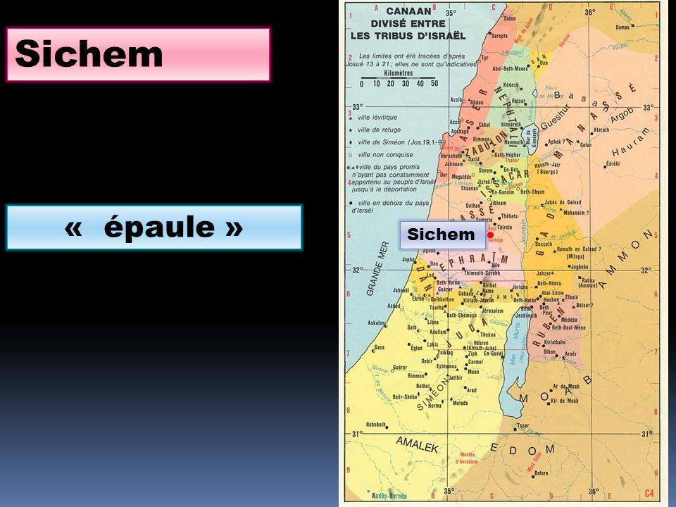 Sichem « épaule » Sichem