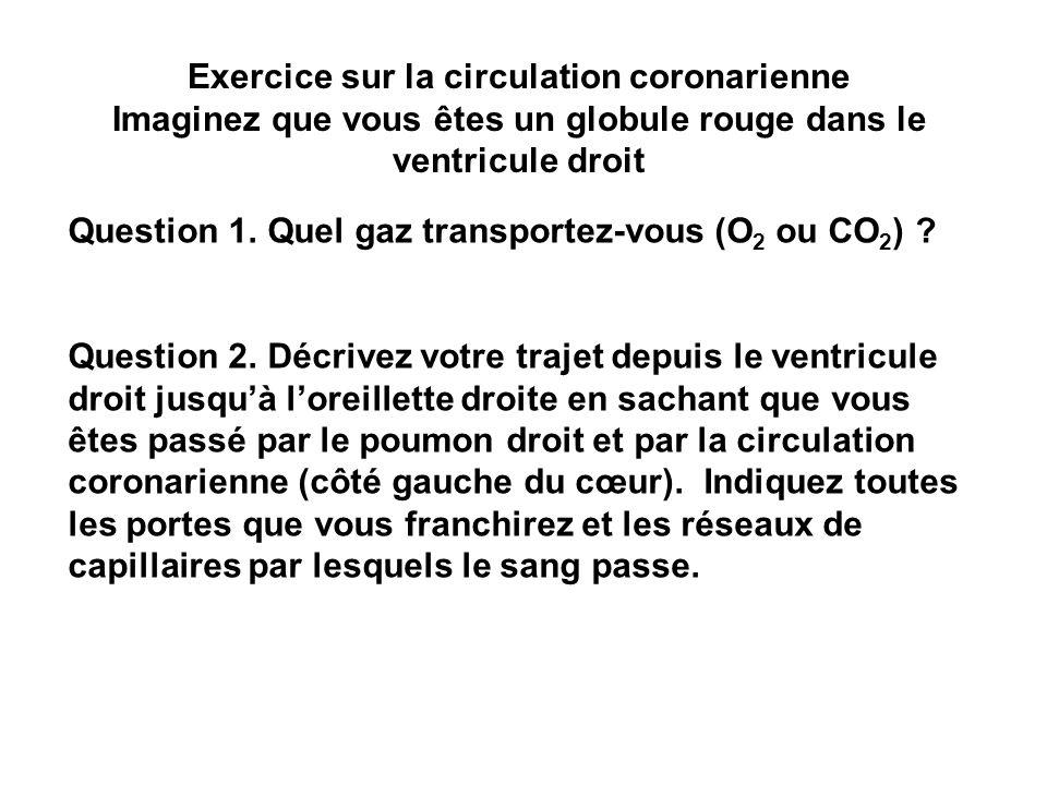 Exercice sur la circulation coronarienne