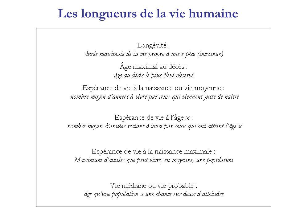 Les longueurs de la vie humaine