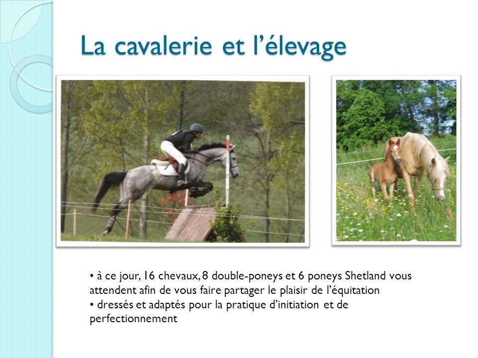 La cavalerie et l'élevage