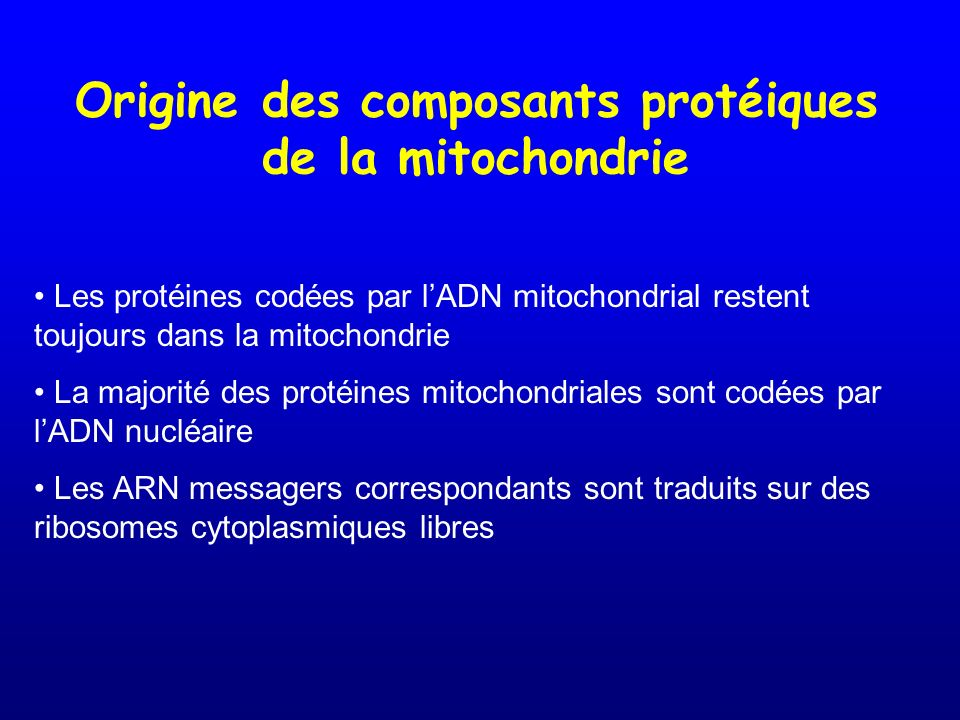 Origine des composants protéiques de la mitochondrie