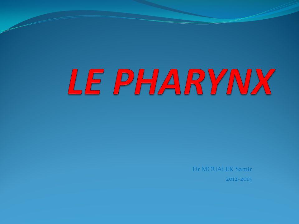 LE PHARYNX Dr MOUALEK Samir 2012-2013