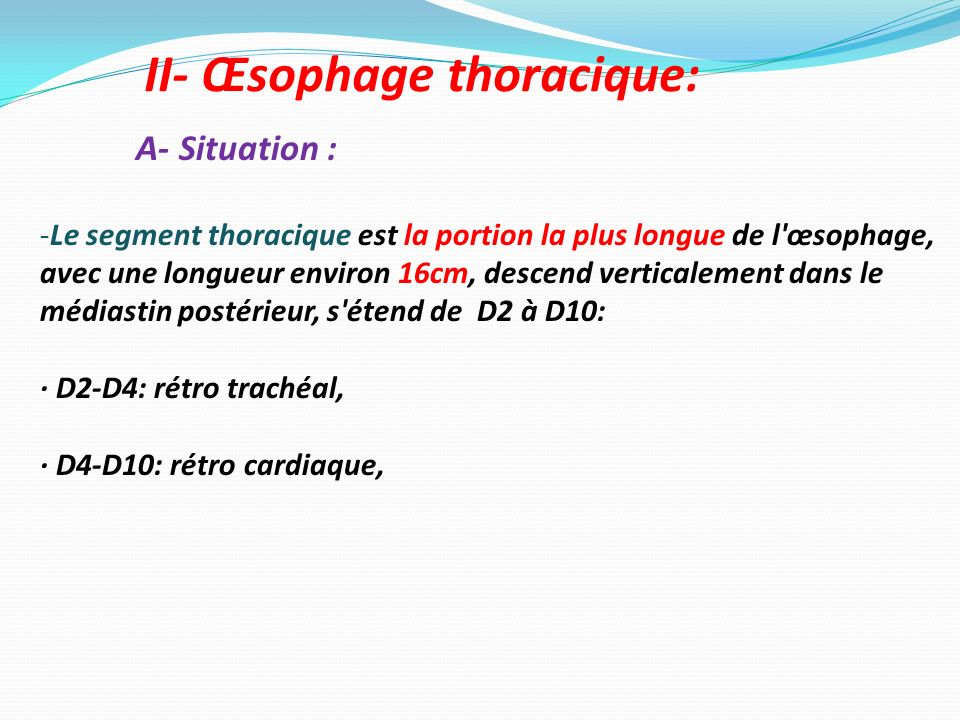 II- Œsophage thoracique: