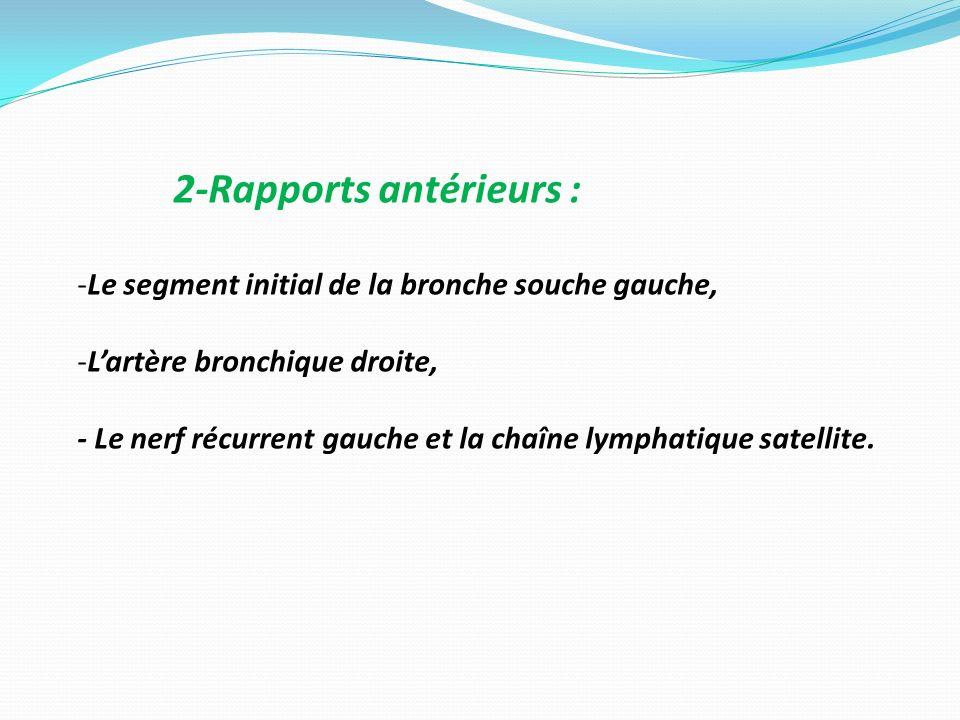 2-Rapports antérieurs :