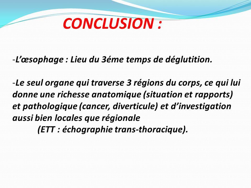 CONCLUSION : L'œsophage : Lieu du 3éme temps de déglutition.